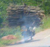 wood on bike